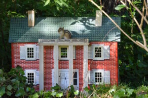 Chipmunk House Residence at Port Franks Getaway. They love their free peanuts! Ontario, Canada