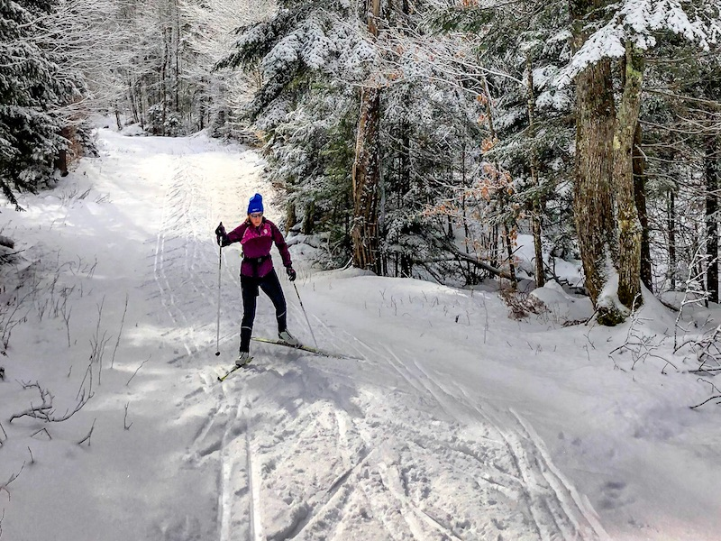 Cross Country Skiing in the Area