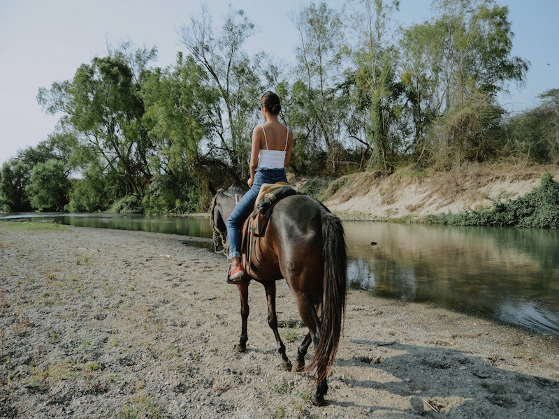 Horse Back Riding with All About Horses Thedford
